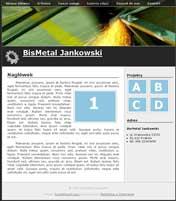 przemysl Gotowe strony WWW