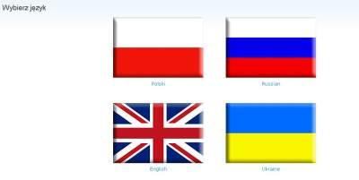 wybierz jezyk Pozycjonowanie witryn wielojęzycznych