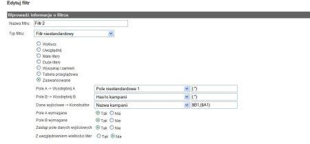 Filtr w Google Analytics, który pokazuje wyszukiwania z AdWords