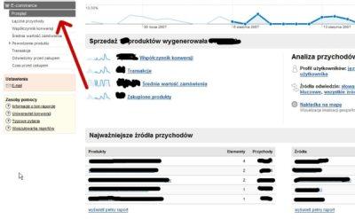 Funkcjonalność Ecommerce w Google Analytics