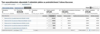Filtr Google Analytics dla kampanii AdWords - raport dla Ecommerce druga