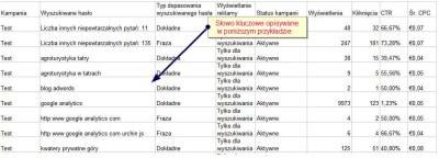 raport skutecznosci adwords 2 Jak odczytywać Raport skuteczność wyszukiwanego hasła?