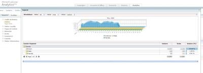 segmentacja plec 2 Microsoft adCenter Analytics