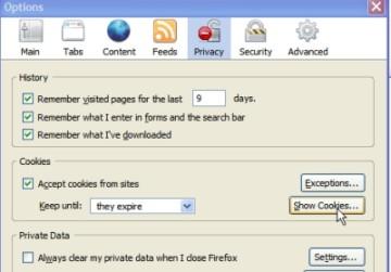 Ciasteczka Google Analytics w Firefox