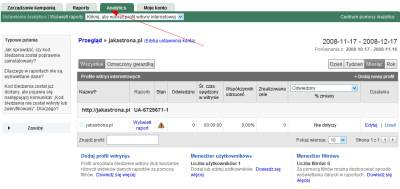 Sekcja Google Analytics w koncie Google AdWords