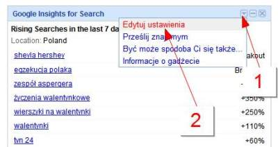 Konfiguracja gadżetu Google Insights for Search