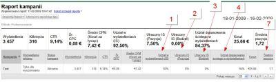 Kampania Google AdWords - wskaźniki