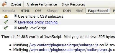 Page Speed - optymalizacja strony docelowej