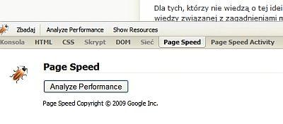 Analiza wtyczki Page Speed