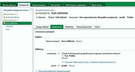 ustawienia adwords Rozszerzenia reklam Google AdWords   sposób na wyróżnienie się spośród konkurencji