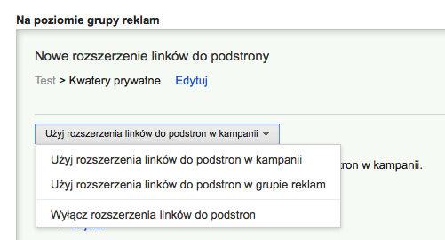 linki witryny grupy Rozszerzone kampanie w wyszukiwarce Google   o co w tym chodzi?