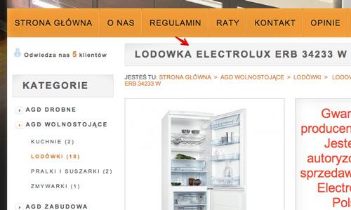 Tworzenie kampanii DSA - Dynamiczne reklamy w wyszukiwarce